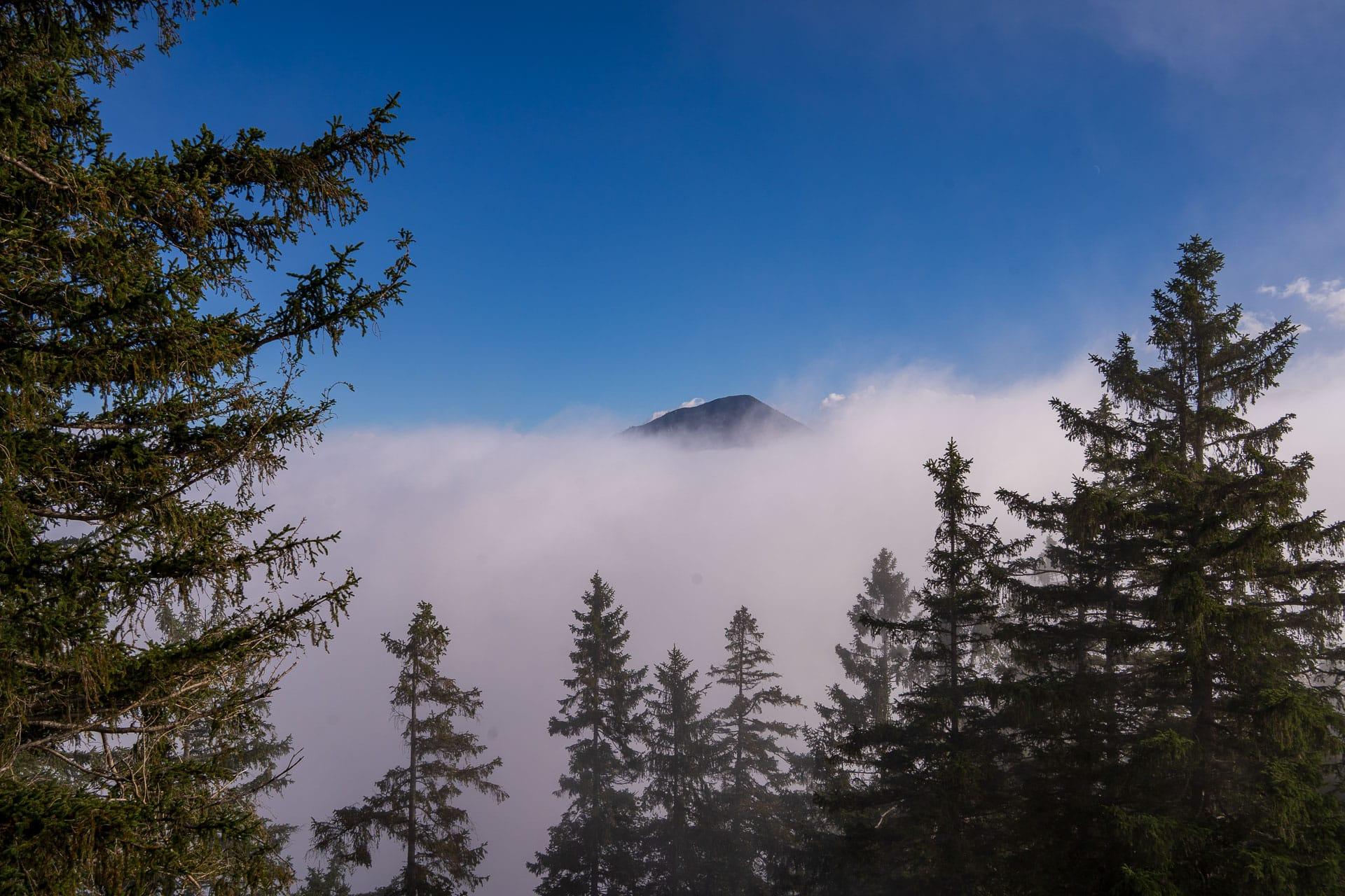 Blick auf den Hirschberg vom Osterfeuerköpfl